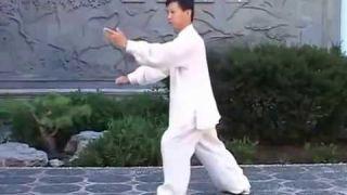 Tai Chi Quan Yang Style Traditional 108 form